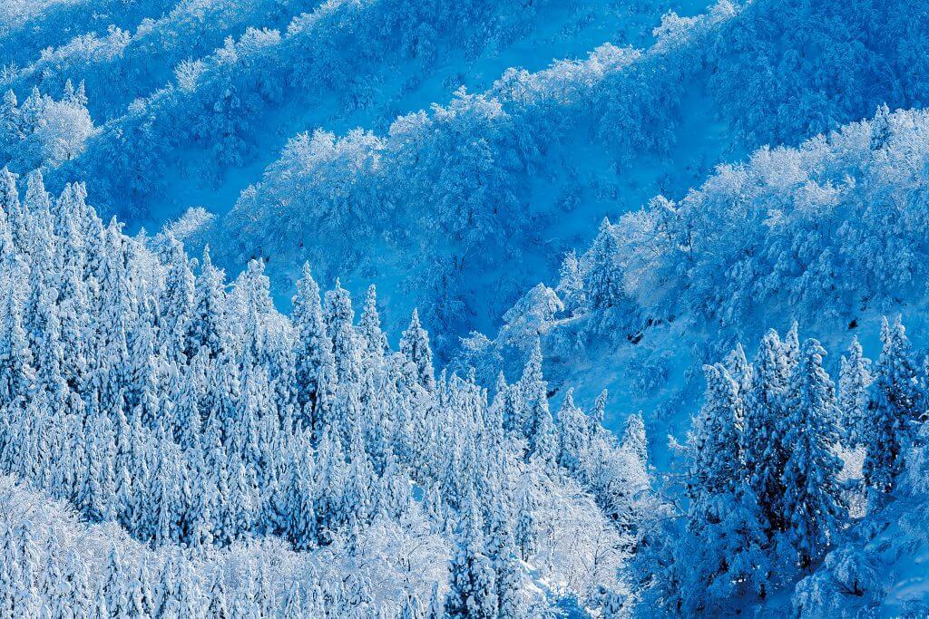 雪の降るまち十日町市