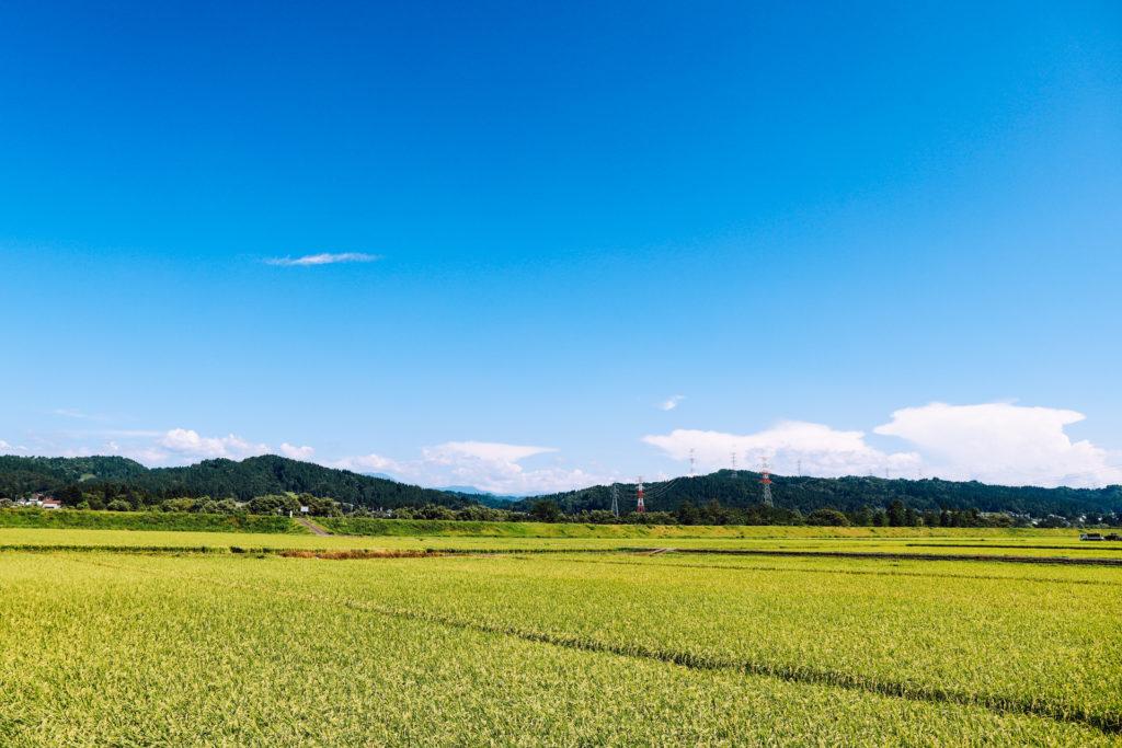 田畑の広がる自然